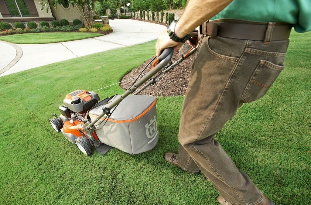 Lord of the Lawn: 5 Lawn Care and Landscaping Tips for Landlords